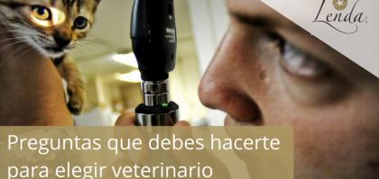 Preguntas que debes hacerte para elegir veterinario
