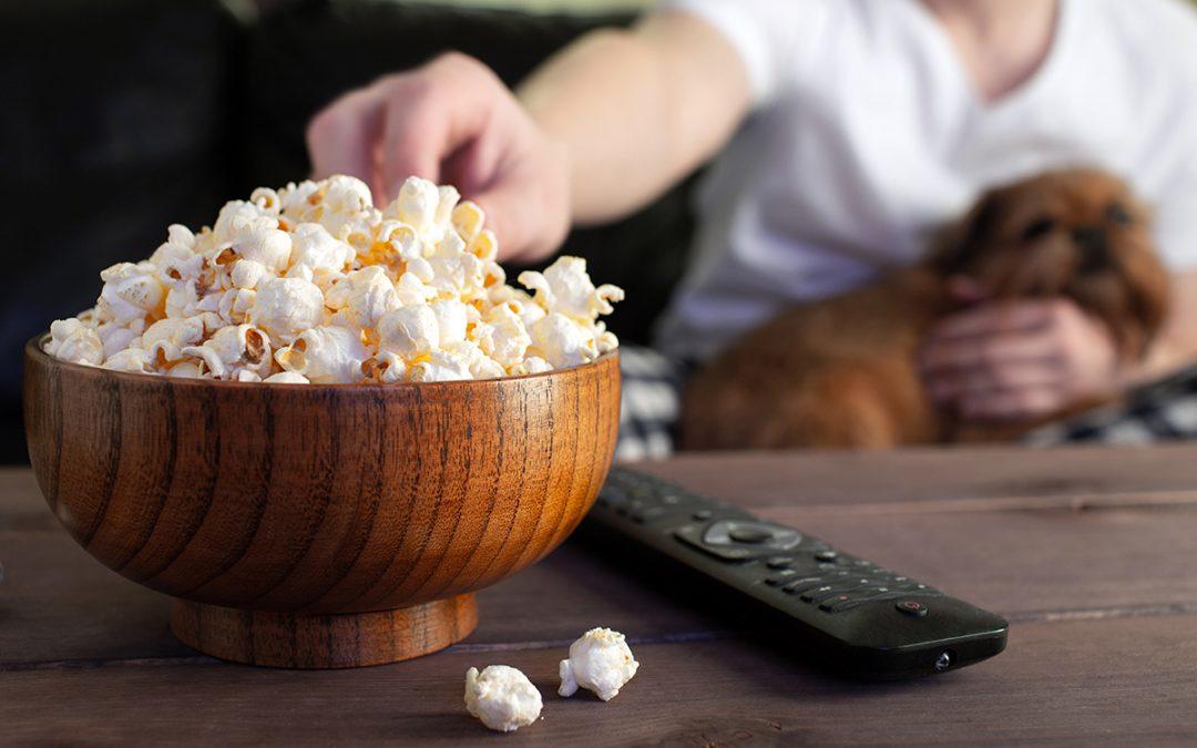 Las 10 mejores películas que deberías ver con tu perro durante la cuarentena